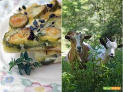 Quiche agli zucchini, toma di Lanzo e maggiorana