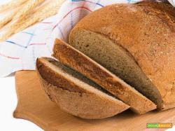 Il pane biologico fatto in casa: la ricetta