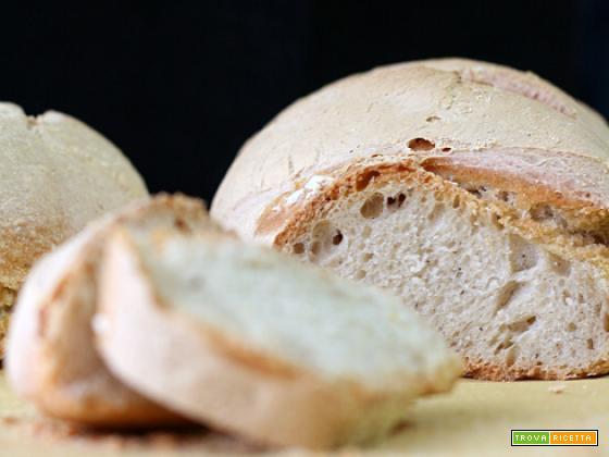 Semplicemente pane