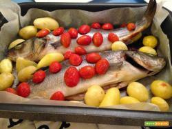 Senza Bimby, Branzini al forno con Pomodorini e Patate