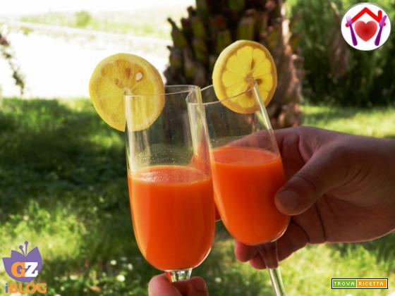 Centrifuga di carote al Gin