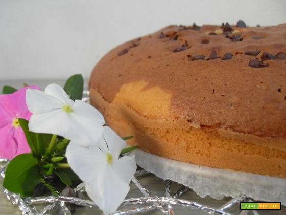 Torta marmorizzata Bimby