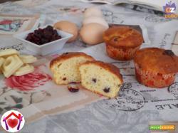 Muffin al cioccolato bianco e mirtilli rossi