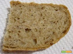 Pane con crusca senza impasto