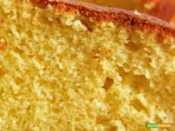 Senza Bimby, Torta all'Arancio