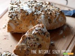 Pane integrale senza impasto, ricetta con lievito naturale