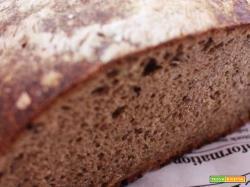 Pane con farina di segale integrale