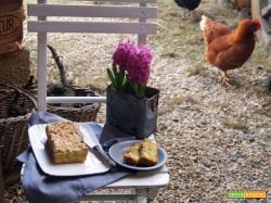 Cake vegan con porri, patate e tandoori masala