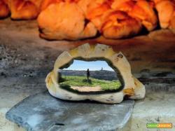 Il pane di Matera: un'architettura di storia e di gusto