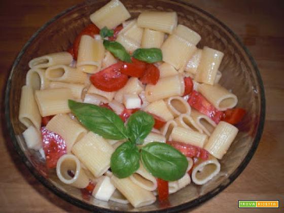 Paccheri freddi con pomodoro e asiago