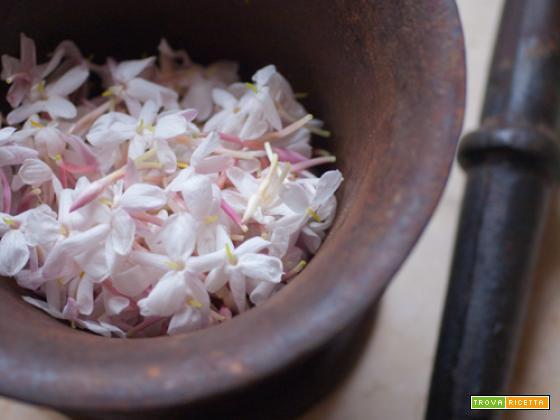 Torta frangipane al gelsomino, con frolla di riso thai che profuma di sogni