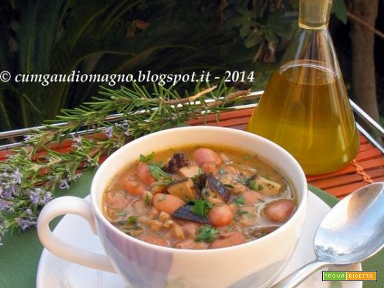 Zuppa di farro con funghi porcini e fagioli borlotti