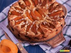Torta con albicocche e pinoli