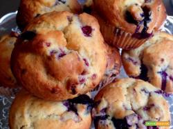 Muffin allo Yogurt e Frutti di Bosco
