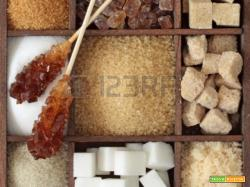I vari tipi di Zucchero