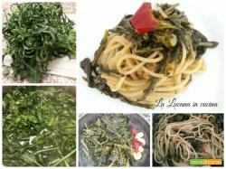 Spaghetti con broccolo spigarello