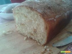 Rotolo di pan brioche alla marmellata con Lievito madre