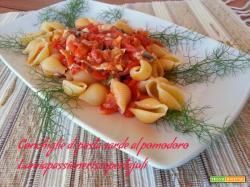 Conchiglie di pasta sarde al pomodoro, finocchietto selvatico