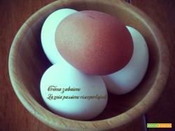 Crema Zabaione CLASSICO