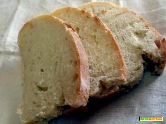 Pane bianco farina di grano tenero 00 lievito di birra in cubetto