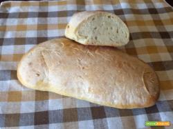 Pane con olio aromato, farina di grano duro lievito madre