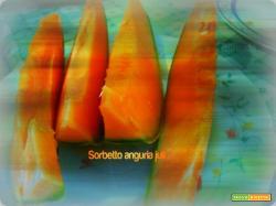 Sorbetto anguria alla vodica cantalupo liquore vodica
