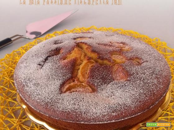 Torta soffice alle albicocche un dolce ripieno di albicocche