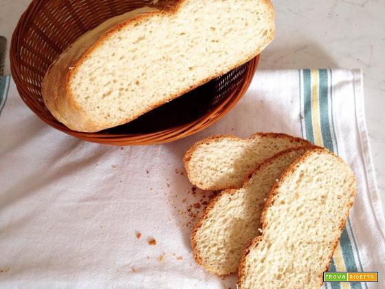 Pane facile e veloce