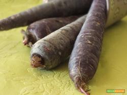 carote e zucca con liquirizia