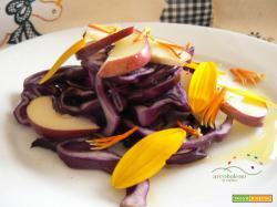 Insalatina di Cavolo Cappuccio Viola con Mele e gocce di Miele , condita con aceto profumatoArcobaleno