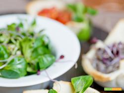 Cestini di insalata