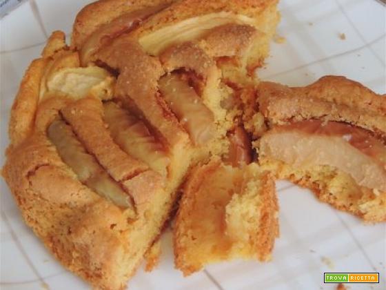 Torta di mele col Bimby con farina di farro e riso