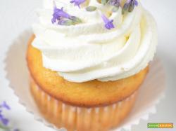 Cupcakes alla lavanda e limoncello