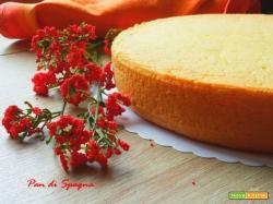 Pan di Spagna soffice da farcire