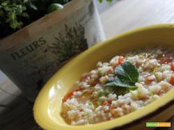 Zuppa di orzo, farro e riso agrumata