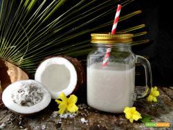 Preparare in casa il latte di cocco