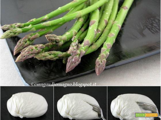 Lasagna con asparagi e burrata