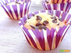 Muffins allo yogurt e gocce di cioccolato