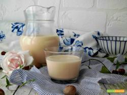 Fare in casa il latte di nocciole