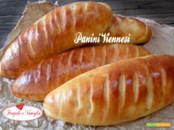 Panini Viennesi