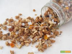 Masala Granola, ovvero La granola indianizzata di Gaudio