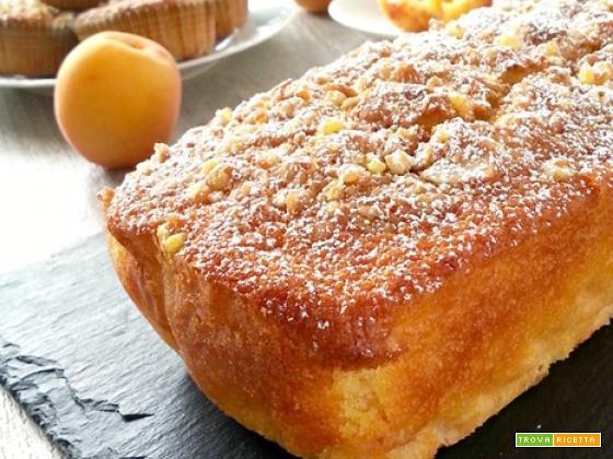 Plum cake leggero alla doppia albicocca
