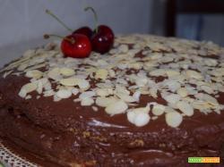 Pan di Spagna con mousse al cioccolato fondente