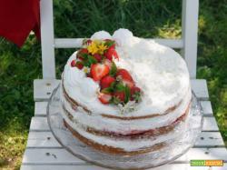 Sweet friday: Naked Cake fragole, panna e meringa