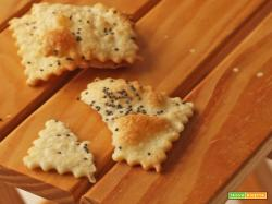 Crackers homemade ai semi di papavero