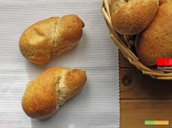 Pane integrale morbido morbido