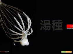 Tang Zhong: cos'è e come funziona