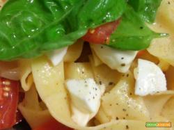 Pasta fresca (con farina di farro) con pomodoro, mozzarella e basilico