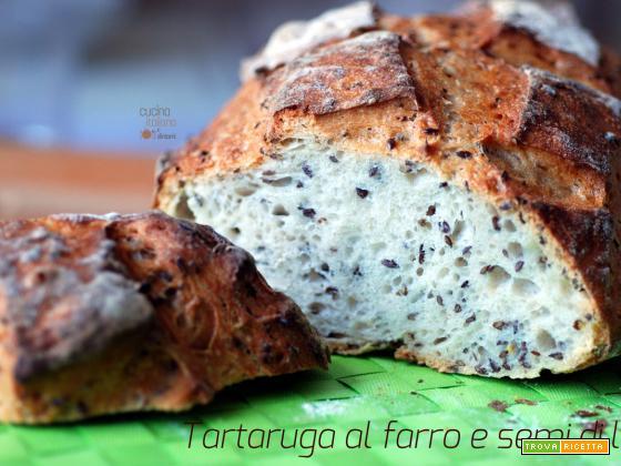 Tartaruga al farro con semi di lino, ricetta con pasta madre