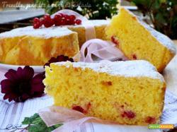 Torta ribes con carota e bucce di limone